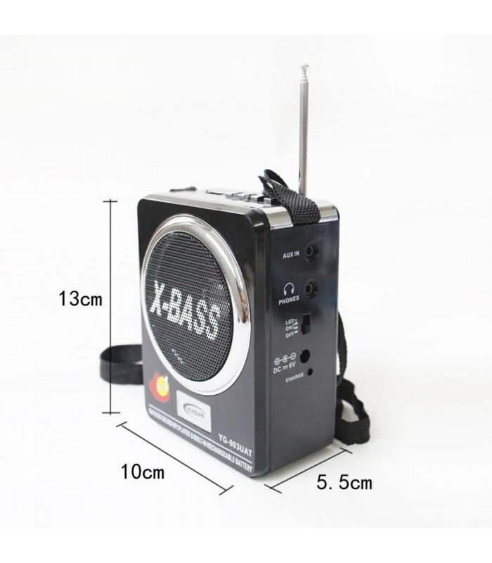 Дигитално радио с флашка