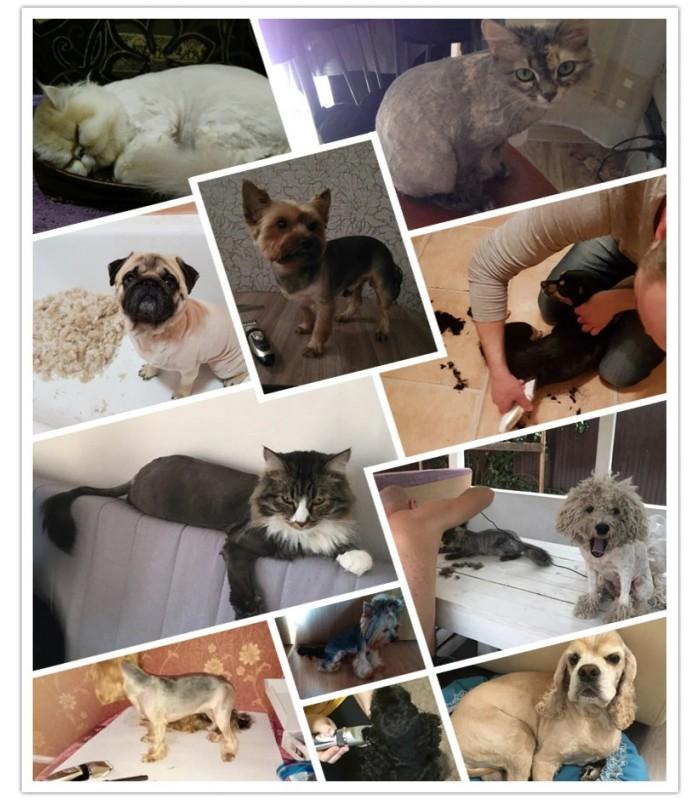 Безжична машинка за подстригване на кучета и котки - 8