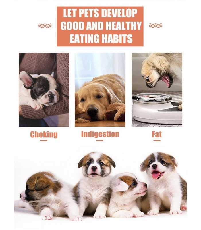 Купичка за лакоми кучета - 8