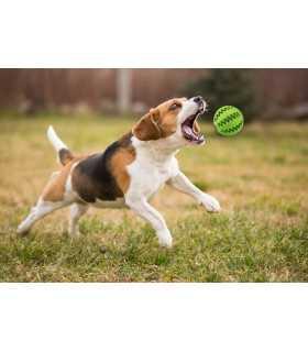 Дентална топка за куче - 7