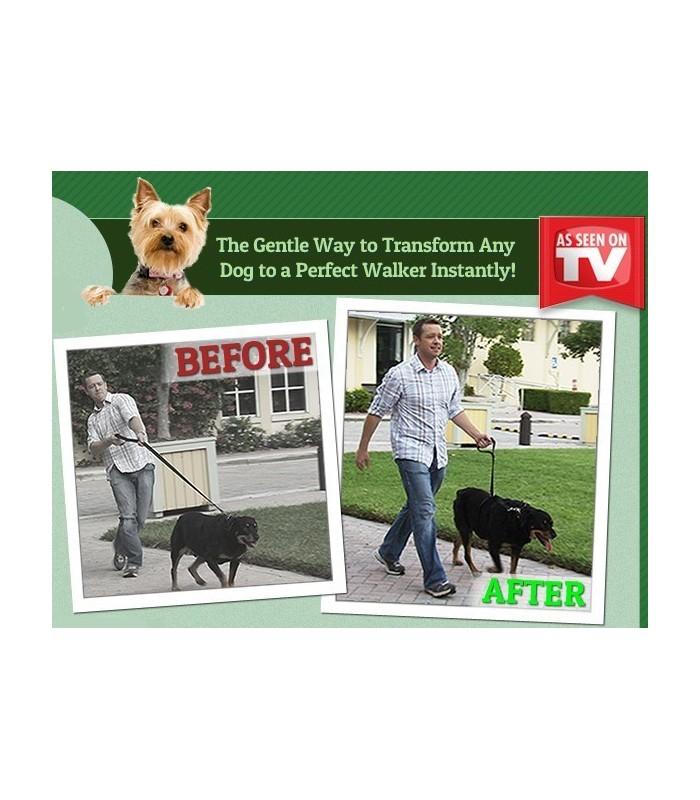 Нашийник/повод за кучета Instant trainer