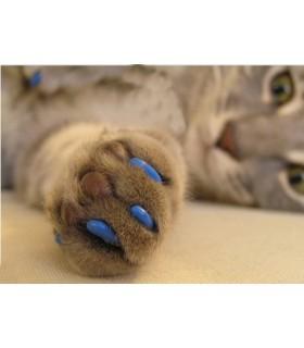 Накрайници за нокти на котки - 20 бр. + лепило